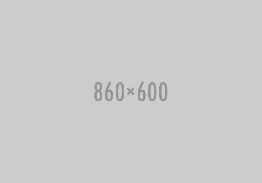 C1610S